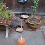 Free Standing Bird Feeder